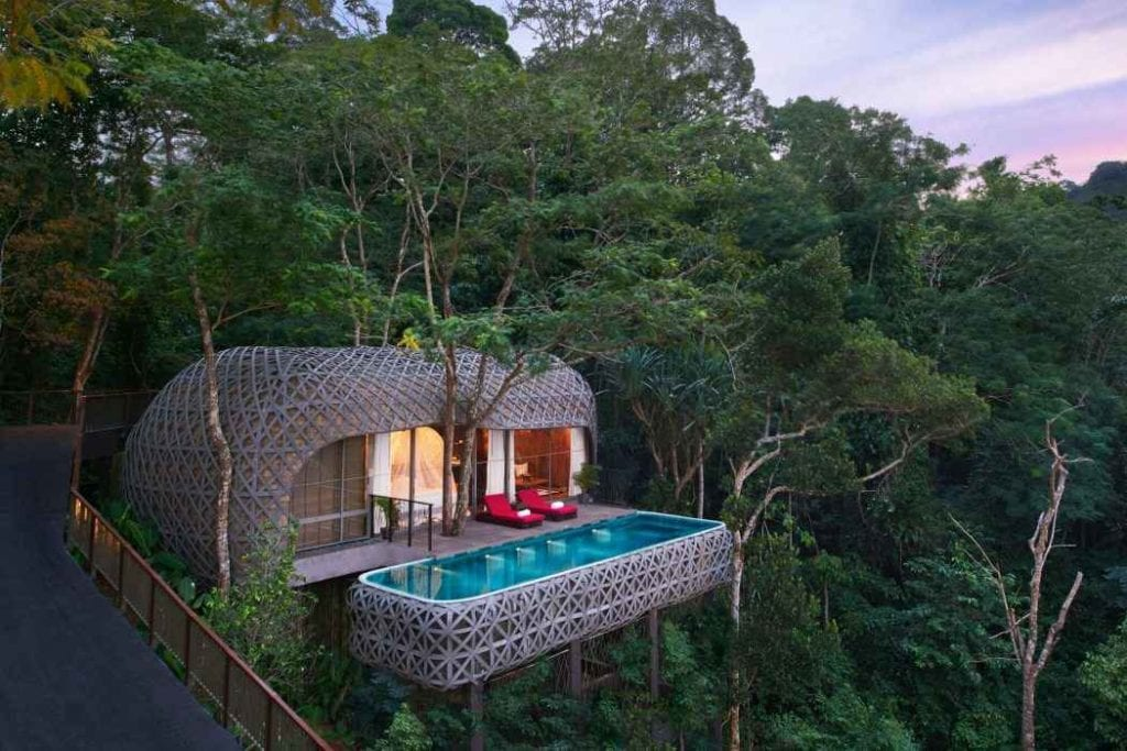 Treehouse – To Reconnect With The Nature In The Most Beautiful Way